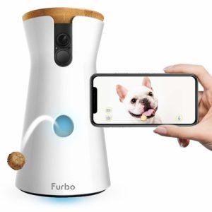 una telecamera per cani